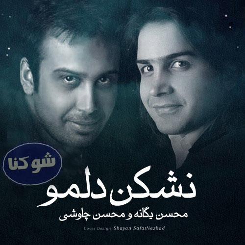 بیوگرافی محسن چاوشی و محسن یگانه