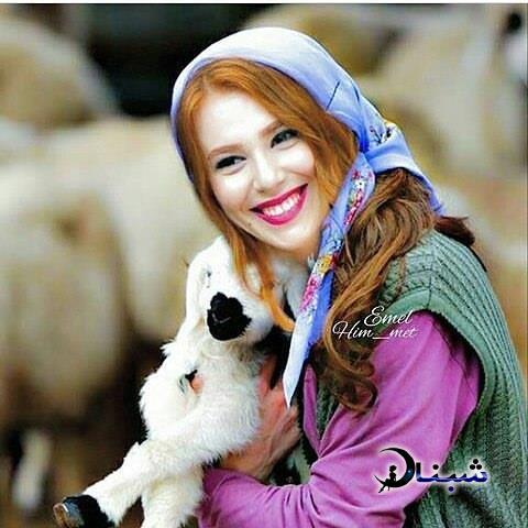 بیوگرافی الچین سانگو بازیگر ترکیه
