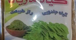 گیاه ماریانا برای تنگ کردن واژن