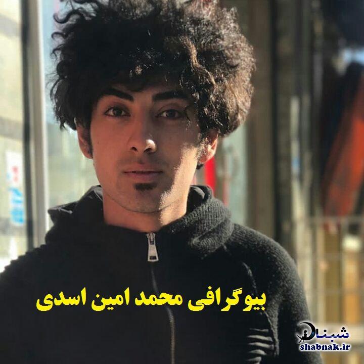 بیوگرافی محمد امین اسدی