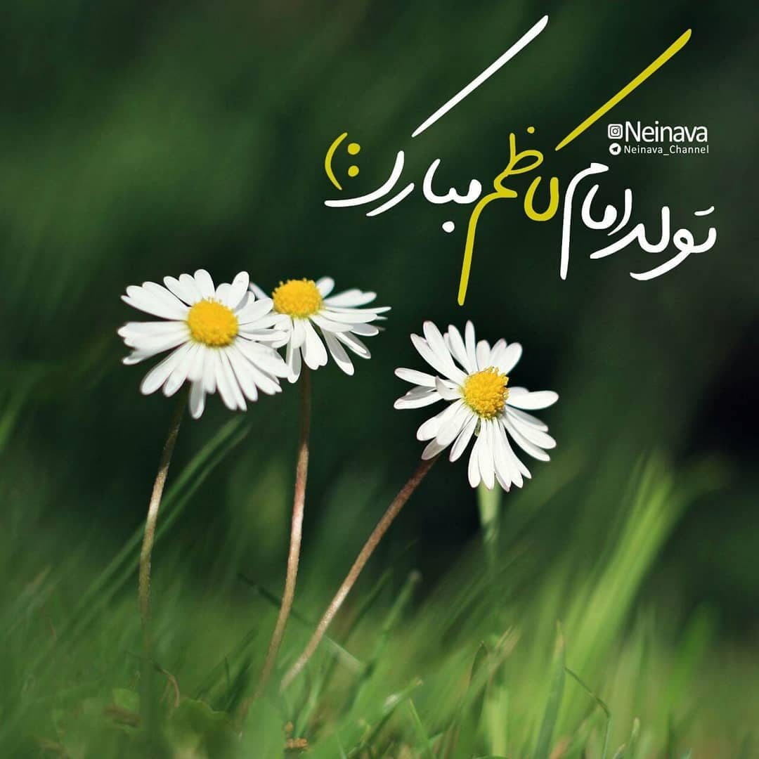 تولد امام موسی کاظم مبارک