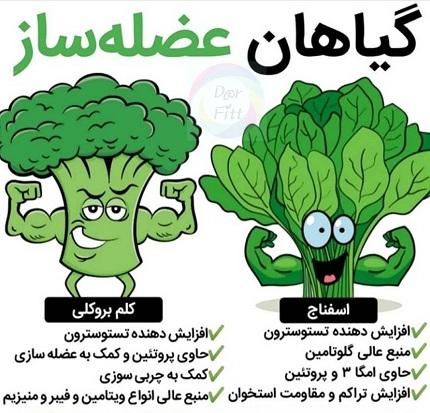 سبزیجات عضله ساز