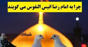 چرا به امام رضا انیس النفوس می گویند